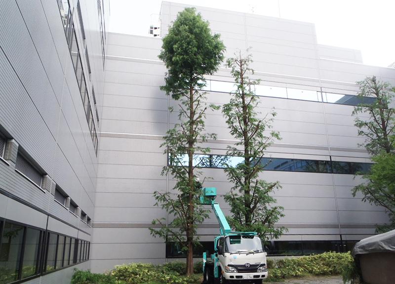 角野造園土木株式会社2